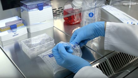 Preventing contamination in cell culture lab